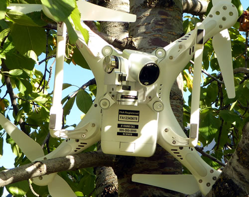 Drone crashed and stuck in tree